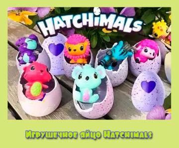 Игрушечное яйцо Hatchimals