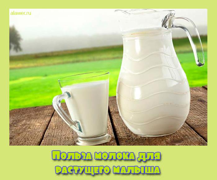Польза молока для растущего малыша
